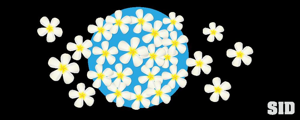 白いプルメリアの花のイラスト 無料配布 南国イラスト Ai Epsイラレ素材 ダウンロードページ
