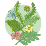 南国系の草花の手描きイラスト