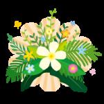 プルメリアなどの南国系植物のイラスト