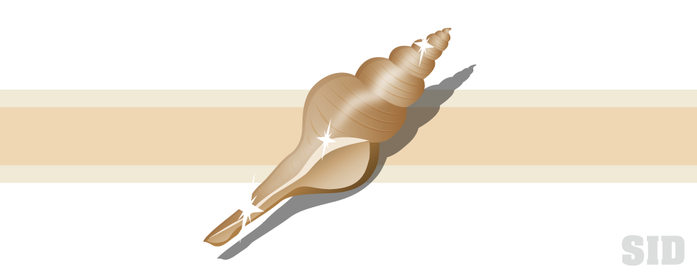 細長い巻き貝のイラスト